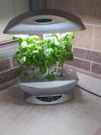 Home Hydroponic Gardening